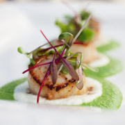 Seared Scallop with Green Pea Puree